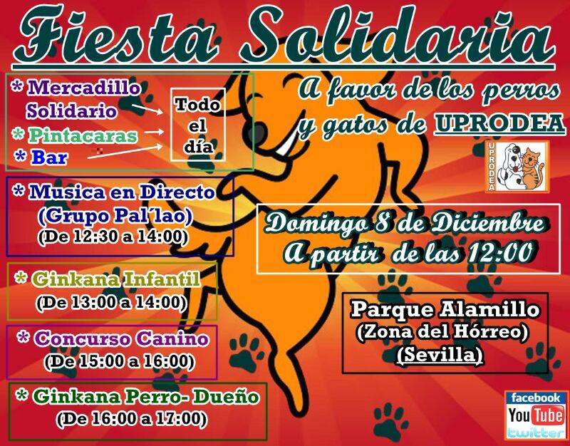 FiestaSolidariaDiciembre