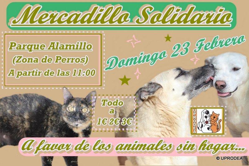 Mercadillo23febrero2014.jpg