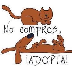 NoCompres.jpg