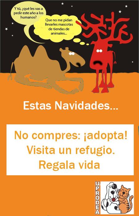 cartel2Navidad2012